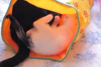 20110628-09.JPG